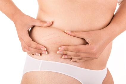 mecanismo regulador peso corporal
