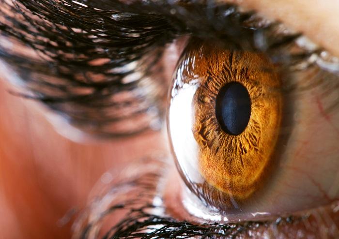 descripció del glaucoma