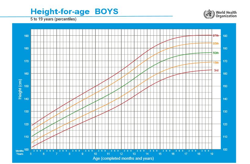 percentils i corbes creixement nens  5-19