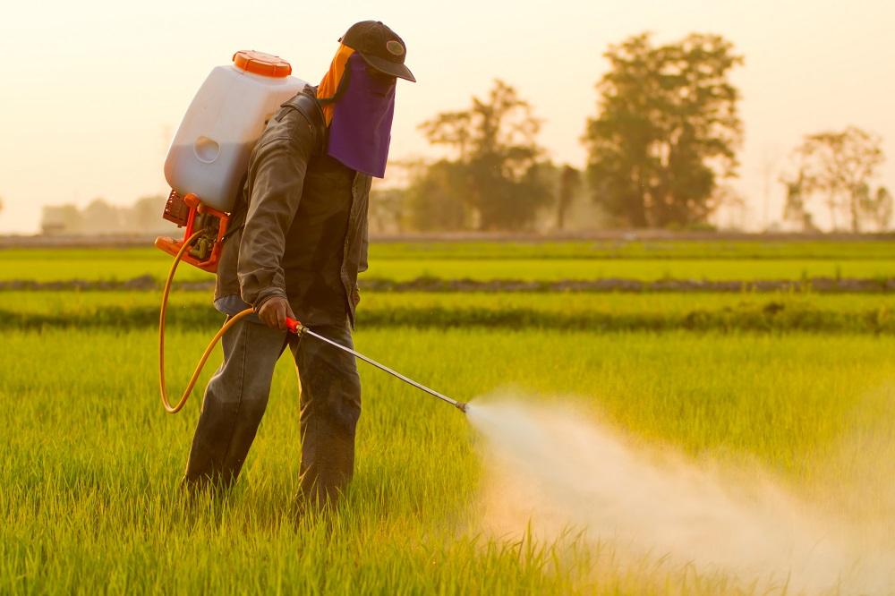 herbicides, insecticides i plaguicides presents als aliments
