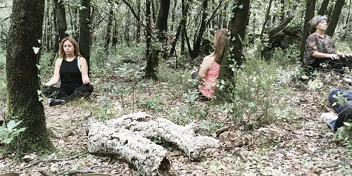mindfulkit-forest-bathing-wellness-edgar-tarres1