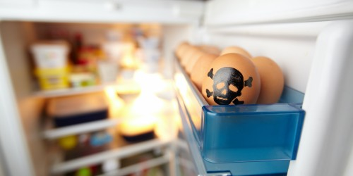 Ei mit Totenkopf im Kühlschrank